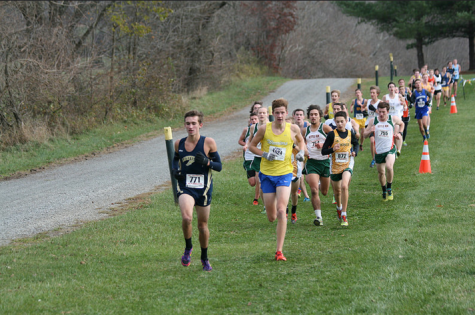 Boys Cross Country Team Places Fourth at States