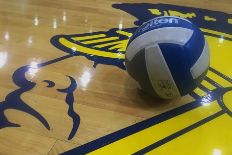WAHS Volleyball Continues to Impress