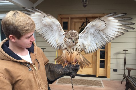 Falconer Soars into School