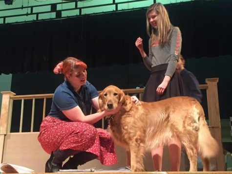 "Gallery: Spring Musical ""Legally Blonde"""