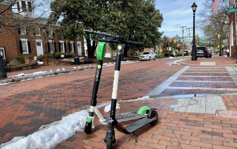 Lime vs. Bird: An E-Scooter Review